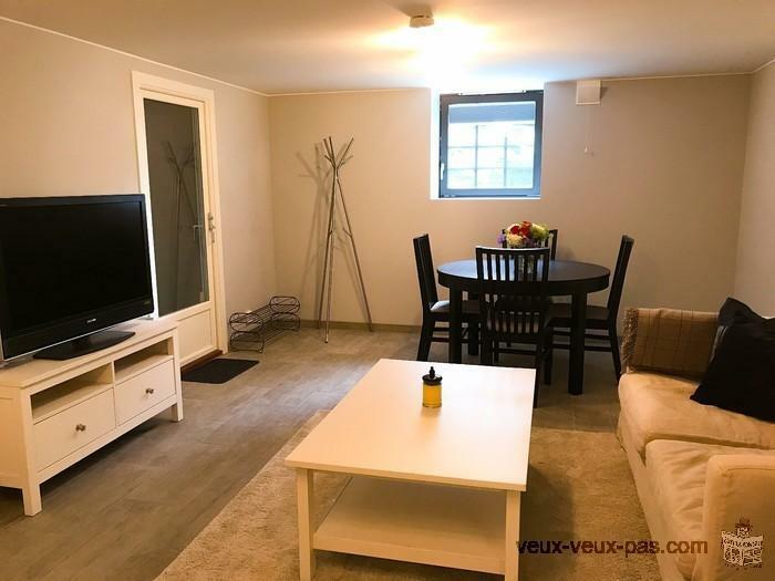 Appartement 1 chambre meuble 44m² Québec-Montréal